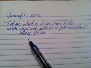 Tell me, what is it you plan to do with your one, wild and precious life? - Mary Oliver